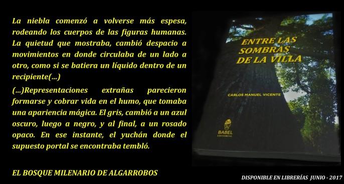 publicidad libro 3